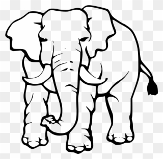 Free Png Elephant Black And White Clip Art Download Pinclipart In this tutorial i will show you how to draw a realistic african elephant step by step from scratch. free png elephant black and white clip