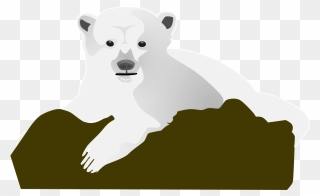 Free Png Bear Face Clip Art Download Pinclipart