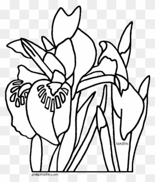 Download Hawaii State Flower Clip Art Clipart Hawaiian