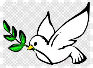 Birds dove. Peace clipart pigeons and