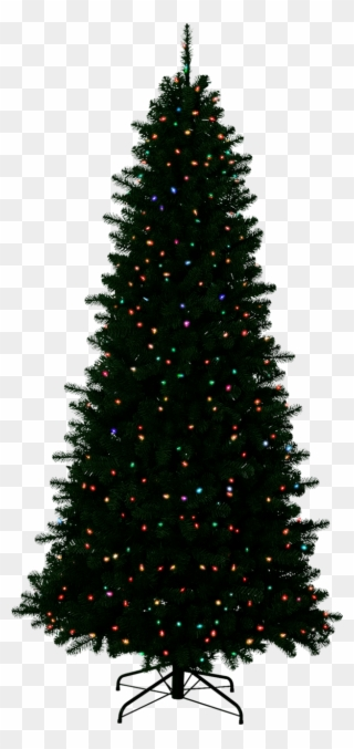Free Png Christmas Tree Transparent Background Clip Art Download