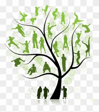 Free Png Family Tree Clip Art Download Pinclipart