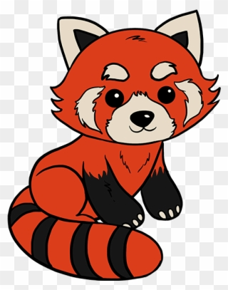 Red Panda Drawing Easy Red Panda Drawing Clipart 241180