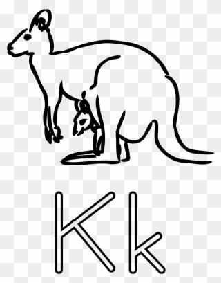 Legs Clipart Kangaroo