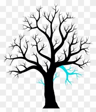 Twig Drawing Ash Leaf Clipart 2851095
