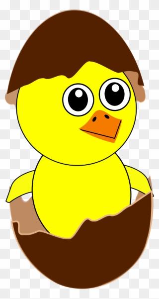 Easter Chick Images Gambar Ayam Menetas Kartun Clipart 33085