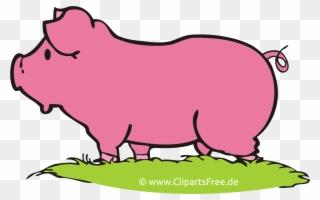 Images Gratuites Cochons Ferme Clipart Clipart Schwein Png Download 353503 Pinclipart