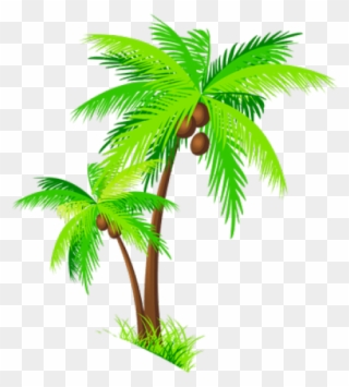 Coconut Tree Clip Art Cartoon Palm Tree Background Png Download