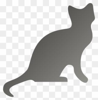 Free Png Grey Cat Clip Art Download Pinclipart