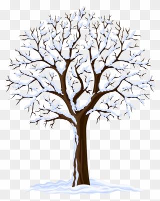 Forest Tree Dead Tree Branch Black Winter Bare Si