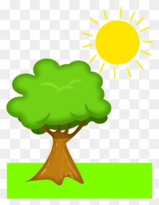 Tree Sun Scenery Plant With Sunlight Clipart Png Download