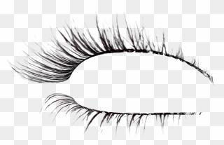 Free Png Eyelashes Clip Art Download Pinclipart