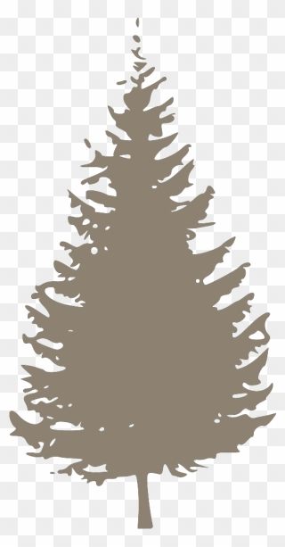 Pine Tree Vector 17 Buy Clip Art Tree Icons Creative Commons Png Download Full Size Clipart 1196592 Pinclipart A fireplace beside a christmas tree background. pine tree vector 17 buy clip art