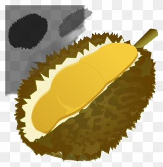 durian clipart durian fruit the next web png download full size clipart 1275915 pinclipart durian clipart durian fruit the next