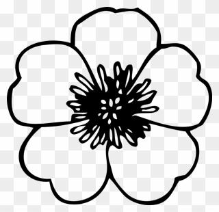 Saree Border Design Concept Flowers Indian Stock-Vektorgrafik (Lizenzfrei)  1493729360