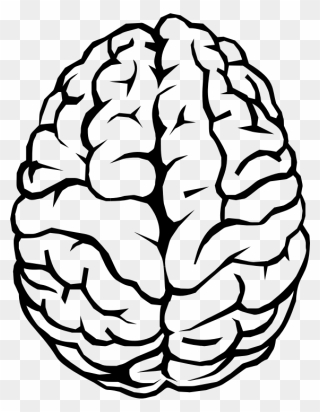 free png brain clip art download pinclipart free png brain clip art download