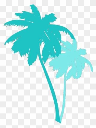 Transparent Palm Tree Illustration Clipart 5600384 Pinclipart