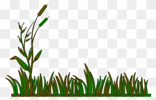 Cattails Stock Vector Illustration And Royalty Free Cattails Clipart
