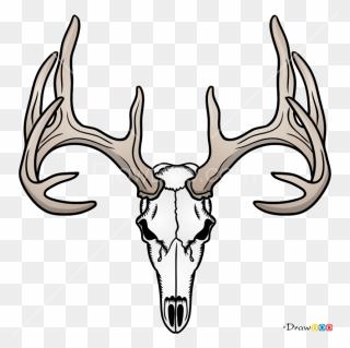 Free Png Deer Head Clip Art Download Pinclipart