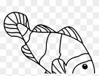 Koi Fish Clipart Draw In Color Gambar Sketsa Ikan Nemo Png